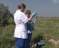 Экологи Павлодара просят объявить ЧС из-за озера с ртутью