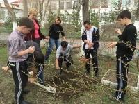 Школьники посадили полсотни декоративных растений