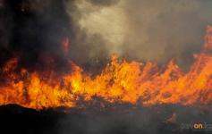 Более семи часов понадобилось пожарным, чтобы потушить горящую пойму в районе Кенжеколя