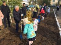 В экологический час ивовые и дубовые саженцы высадили павлодарские школьники