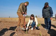 Аким Павлодарской области пообещал следить за ростом высаженных саженцев