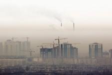 В Казахстане предложили строить дома из конопли и бамбука