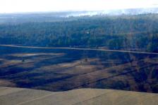 Ущерб от крупного лесного пожара в Павлодарской области подсчитала специальная комиссия