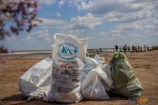 Жителей Павлодарской области приглашают на уборку берегов водоемов
