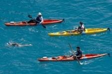 Американская бабушка переплыла пролив между Кубой и США