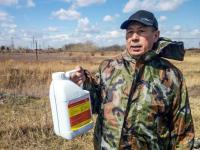 В районе садоводства «Металлург» в Павлодаре начали травить комаров
