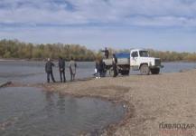 Более 30 тысяч сеголеток карпа экологи АО «ЕЭК» выпустили в Иртыш