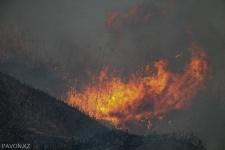 В Павлодаре горит камыш