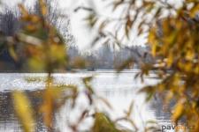 187 килограммов рыбы изъяли полицейские в Павлодарской области