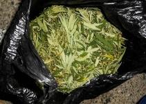 В Павлодаре у мужчины изъяли более 100 килограмм марихуаны