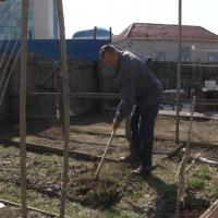 Акимат Павлодара изымает земельные участки в рамках реконструкции Набережной в районе Гусиного перелёта