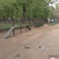 Пять вольеров для выгула собак установят в этом году в Павлодаре