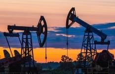 ОПЕК будет контролировать дополнительные поставки нефти на рынок