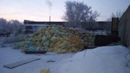 В Павлодаре опасные медицинские отходы хранили под открытым небом