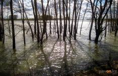 Синоптикипредупреждают о возможном подъёме уровня воды иподтоплении