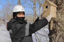 Павлодарские металлурги в рамках экоакции решают квартирный вопрос для птиц
