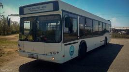 Два новых маршрута соединили павлодарский пригород с центром