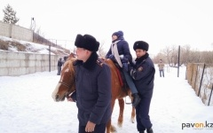"""Павлодарские полицейские еженедельно станут катать на лошадях воспитанников центра """"Самал"""""""