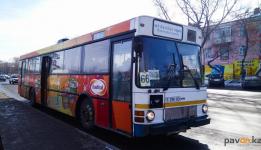 Депутаты покатались в городском автобусе №66