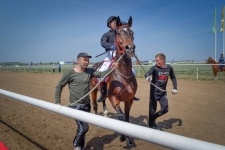 Павлодарские заводчики лошадей благодарны руководству региона за ипподром