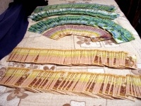 В текущем году в Павлодарской области был зафиксирован 101 случай фальшивомонетничества