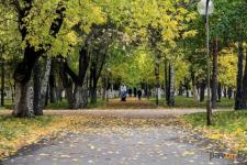 В 2019 году в Павлодаре приступят к благоустройству парковых зон