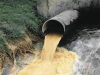 Иртышу угрожает экокатастрофа из-за слива нефтепродуктов и строительства АЭС в Казахстане