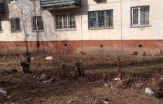 В Павлодаре оштрафованы 35 КСК