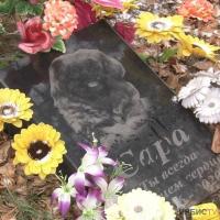 Кладбище домашних животных просят узаконить павлодарцы
