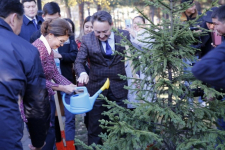 В Павлодаре Дарига Назарбаева посадила ель рядом с деревом, высаженным Сарой Назарбаевой