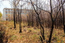 Булат Бакауов предложил вместо общежития около одной из школ города построить парк