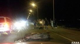 Байкер врезался в лошадь на трассе в Актау