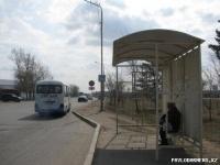 В Павлодаре вместо того, чтобы убрать опасный для жизни знак пешеходного перехода, обновили зебру на этом участке