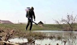 В Павлодарской области началась борьба с кровососущим гнусом