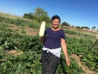Десятки килограммов свежих экологически чистых овощей получили студенты-павлодарцы в качестве помощи от колледжа Ertis
