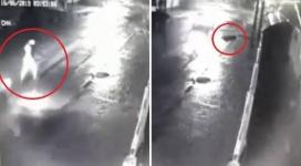Наехал и скрылся: пешеход впал в кому после ДТП в Павлодаре
