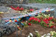 Уникальная птица, символ «Рухани жангыру», появилась на павлодарской набережной
