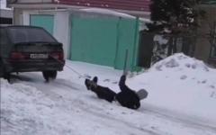 Водителя, катавшего по снегу привязанного к машине блогера, оштрафовали в Павлодаре