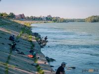 Павлодарец пожаловался на рыбаков у Иртыша