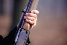 Хотел напугать: полицейские нашли павлодарца, который выстрелил в чужую собаку