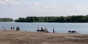 В Павлодаре на реке Усолка чуть не утонули четверо подростков