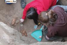 Павлодарские археологи рассказали, что нашли в курганах кимаков под Кенжеколем