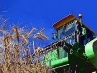 В Павлодарской области из-за непогоды затягивается уборка урожая