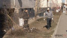 150 деревьев за 3 года посадили жители одного из дворов в Павлодаре