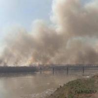 Подсчитан ущерб от лесных пожаров в Павлодарской области