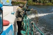 В Павлодаре природоохранные прокуроры изъяли свыше двухсот метров рыбацких сетей