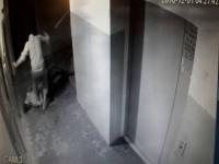 В Павлодаре зверски убит парень