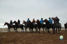 Павлодарцы впервые пробуют себя в роли всадников на бесплатных курсах