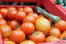 Фермерский рынок с ценами от производителей разместят в районе СпецЦОНа в Павлодаре