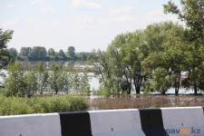 В Прииртышье мужчина утонул на заливных лугах